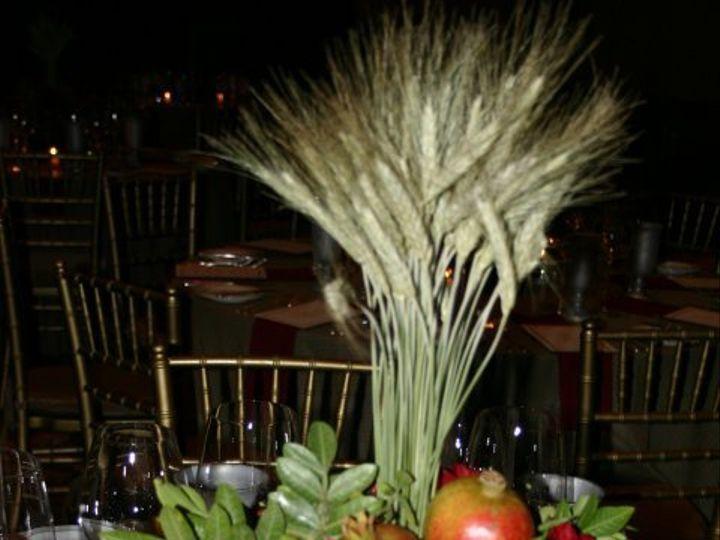 Tmx 1342804519435 20770449226095439449152810439108482264993648n Bayonne wedding florist
