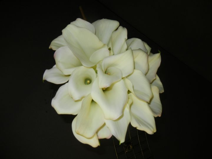 Tmx 1452741021281 Dscn8024 Acton, MA wedding florist