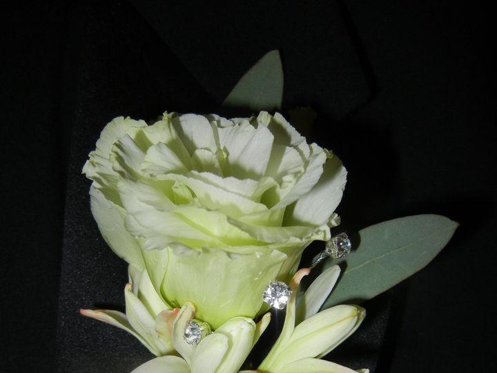 Tmx 1452742112449 Dscn8196 Acton, MA wedding florist