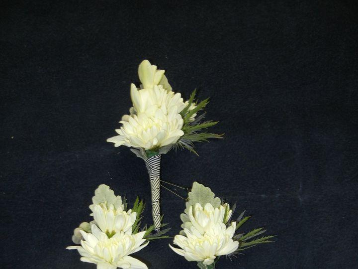 Tmx 1452809236725 Dscn4999 Acton, MA wedding florist