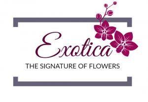 Exoticaweddings.com