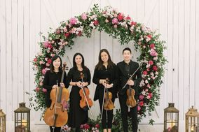 Dallas Asian Strings