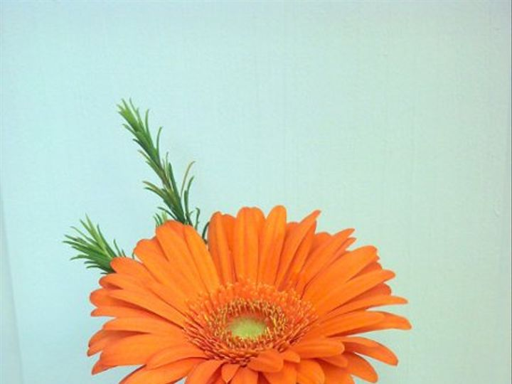 Tmx 1328025627755 IMG20110526105945 Dubuque wedding florist