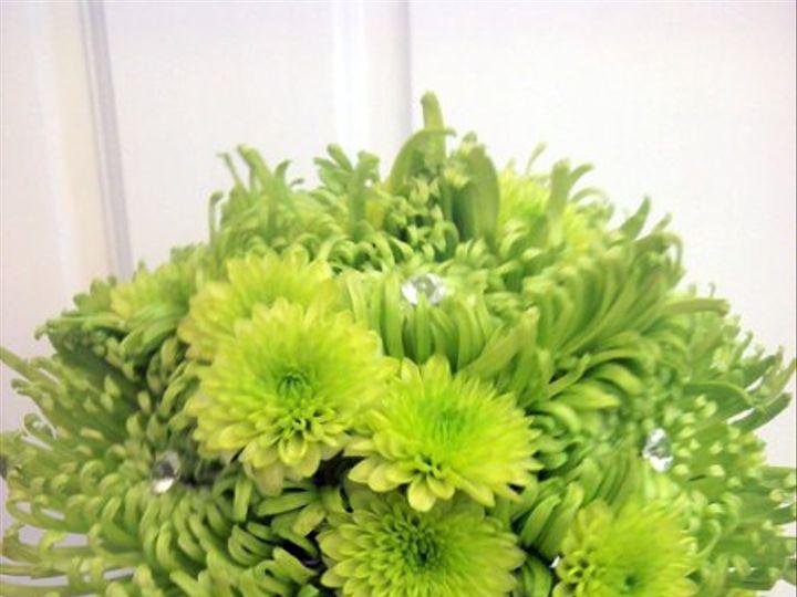 Tmx 1328025778170 IMG20110730095205 Dubuque wedding florist