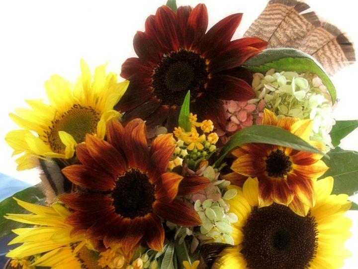 Tmx 1384132834201 Sunflower Bouque Greencastle wedding florist