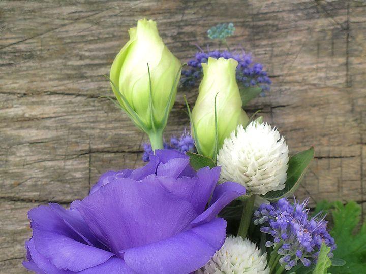 Tmx 1384133886105 Purple Lissie Corsag Greencastle wedding florist
