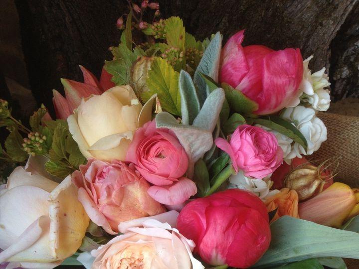 Tmx 1420938603706 Img2065 Greencastle wedding florist