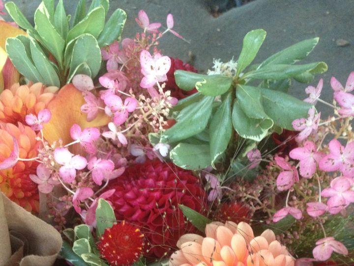 Tmx 1420938712749 Img2774 Greencastle wedding florist