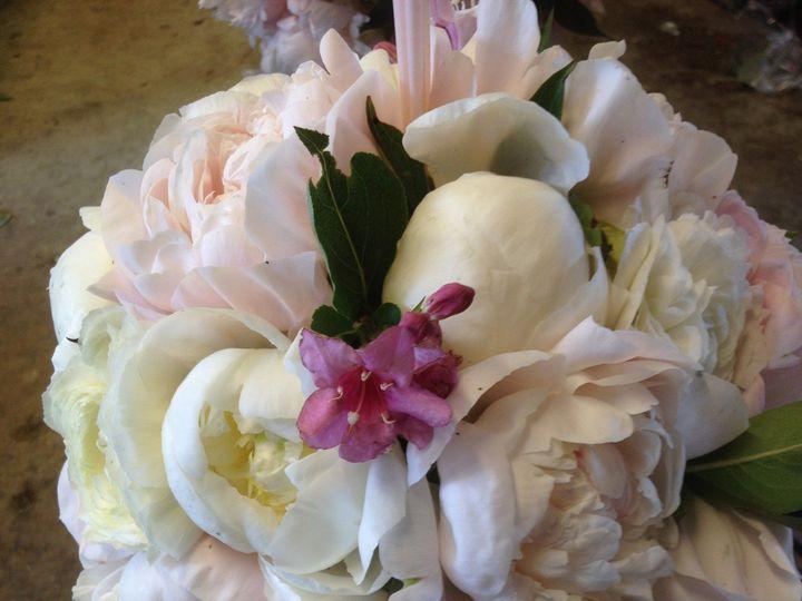 Tmx 1420939134657 Img2087 Greencastle wedding florist