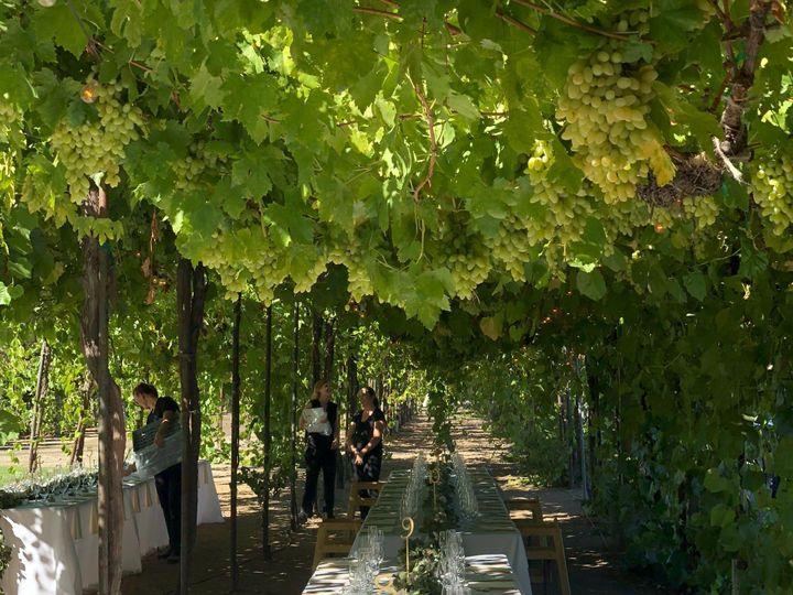 Tmx Img 3321 51 972274 1558030187 Cloverdale wedding florist
