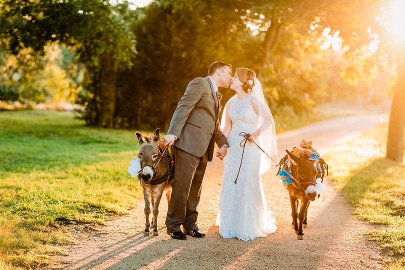 Sunset with donkeys