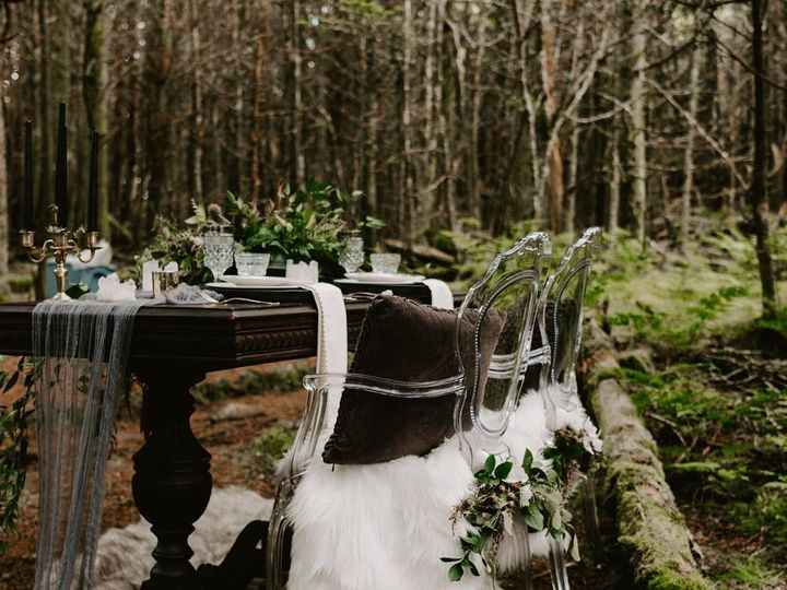 Tmx 49719603 1719275978172283 4521664156738256896 O 51 948274 Spruce Pine, North Carolina wedding planner