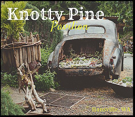 Knotty Pine Pavilion @ Dragonfly Farms