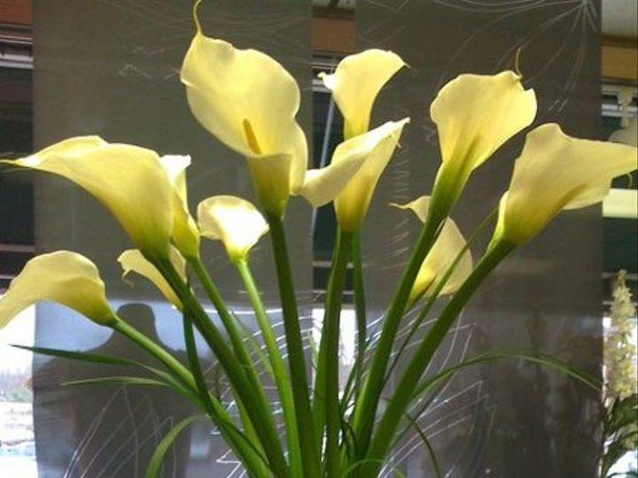 Tmx 1316465489500 Highcenterpiececallas New City, New York wedding florist