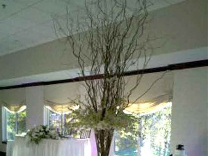 Tmx 1344293962766 TallCenterpieceBranches New City, New York wedding florist