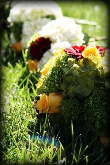 Flowers by Manija