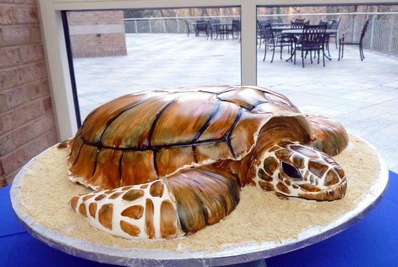 Turtle groom's cake for marine biologist.
