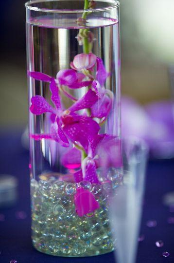 Mokara orchid stem in crystals