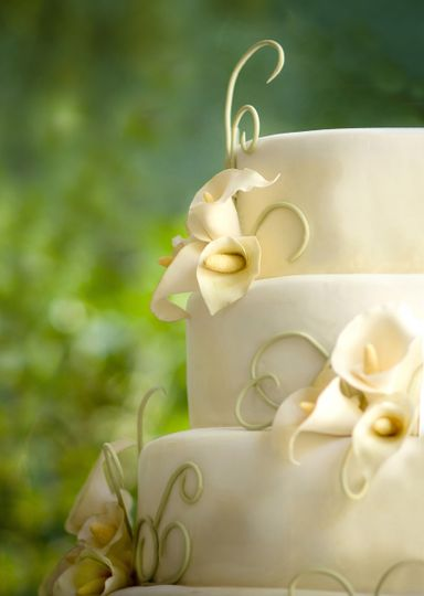Skys the Limit Custom Cakes More Wedding Cake Charlotte