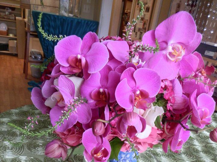 Tmx 1396101832677 Naomihotpink  Providence, Rhode Island wedding florist
