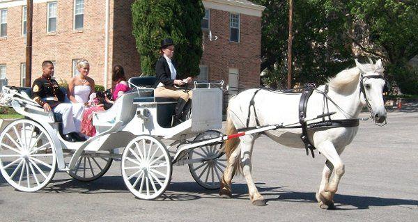 Tmx 1277843303864 Wedding San Antonio wedding transportation
