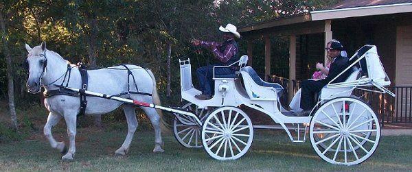 Tmx 1306050242230 Wedding San Antonio wedding transportation