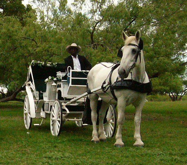 Tmx 1319585419816 P1020788 San Antonio wedding transportation