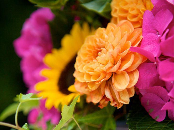 Tmx 1395333981069 Faithfergusonweddingsweddingwire 9 Warwick wedding planner