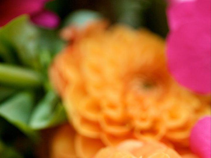 Tmx 1395333990036 Faithfergusonweddingsweddingwire 9 Warwick wedding planner
