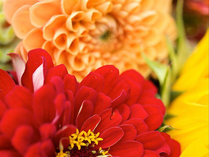 Tmx 1395333996079 Faithfergusonweddingsweddingwire 9 Warwick wedding planner