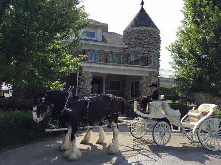 Wedding Springfield, MO