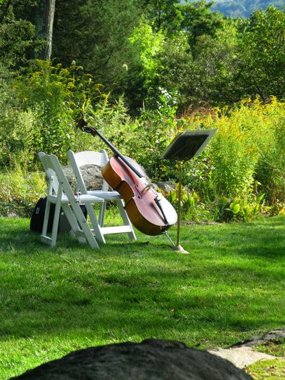 cello in field