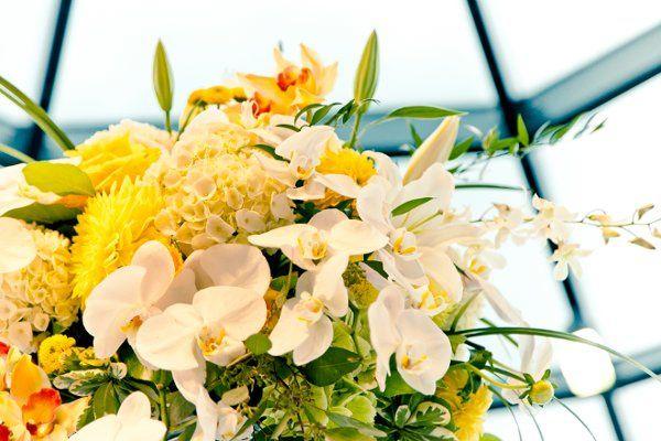 Tmx 1325795237498 IMG0901 Bellingham, WA wedding florist