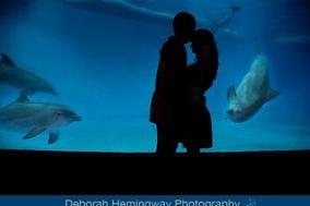 Deborah Hemingway Photography