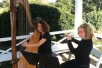 MCMS Musicians for Hire image