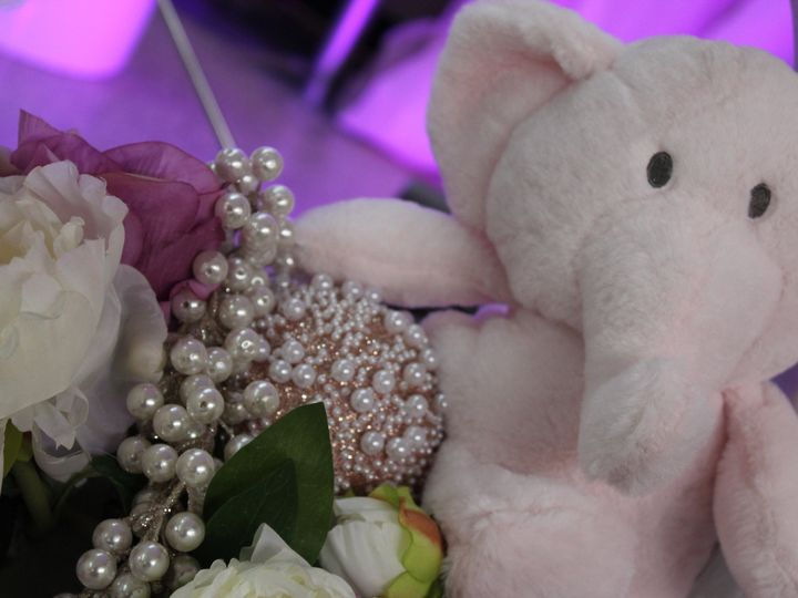 Tmx Img 0872 51 1003974 Eustis, FL wedding venue