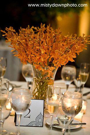 orchids orange mokara