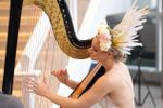 Michelle Campbell - Harpist image