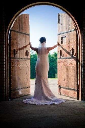 Tmx 1262271611438 Horsey0245 Fredericksburg wedding photography