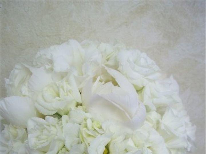 Tmx 1310437938559 1000188 Fort Myers wedding florist