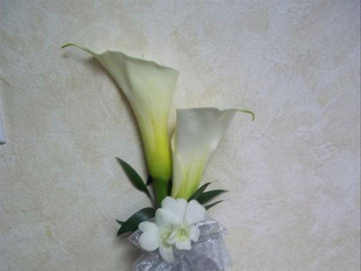 Tmx 1310438071799 1000266 Fort Myers wedding florist