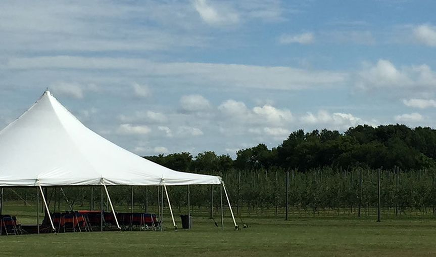 Tented outdoor reception space
