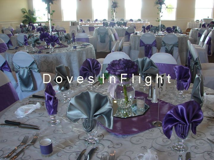 Doves in Flight Decorating / Chair Covers of Lansing