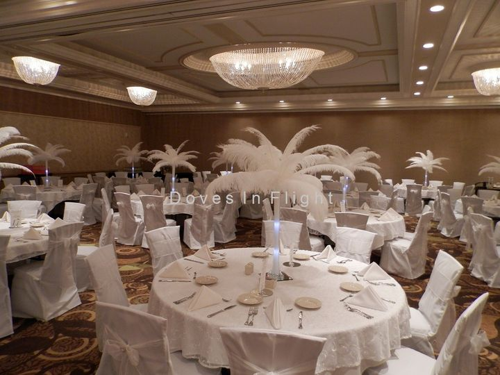 Tmx 1389839602408 All Whit Dimondale, Michigan wedding rental
