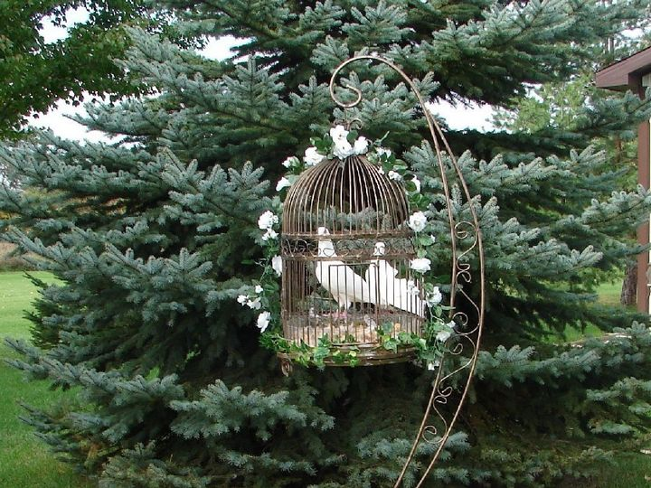 Tmx 1389841924793 Copper Dove Cage  Stan Dimondale, Michigan wedding rental