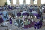 Doves in Flight Decorating / Chair Covers of Lansing image