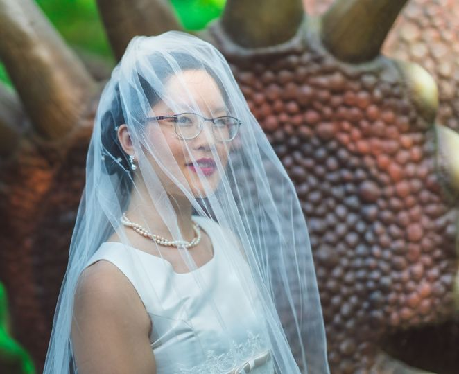 closeup bridal portrait with veil over head standing by the dinosaur 2048 1669 51 1006284 1570780154