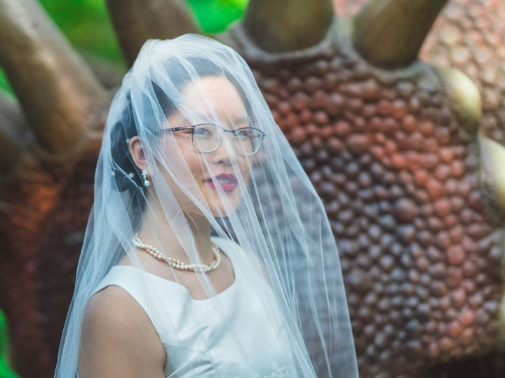 Tmx Closeup Bridal Portrait With Veil Over Head Standing By The Dinosaur 2048 1669 51 1006284 1570780154 Raleigh, NC wedding photography