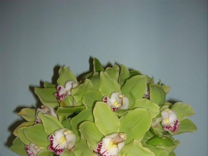 Tmx 1238122366972 Bellaflorainmay004 West Bridgewater wedding florist
