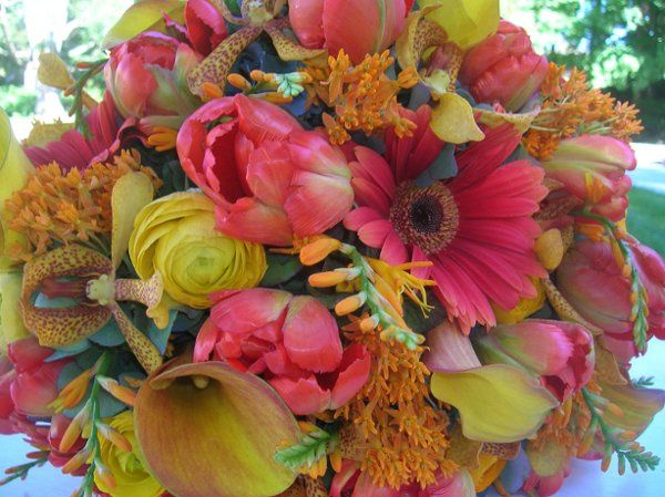 Tmx 1238122507394 Cottreaucasey034 West Bridgewater wedding florist